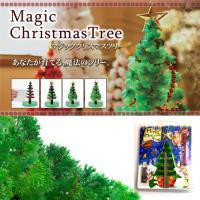 DIY 神奇魔法開花成長聖誕樹-豪華版(附裝飾品)+滿天星空立體夜光組 (50顆星星+1顆月亮)