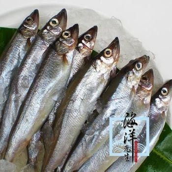 海洋先生 加拿大野生爆卵生柳葉魚400g *8組