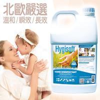 芬蘭Hygisoft科威 護膚抗菌乾洗手  自然無香料  4 Liter-行動