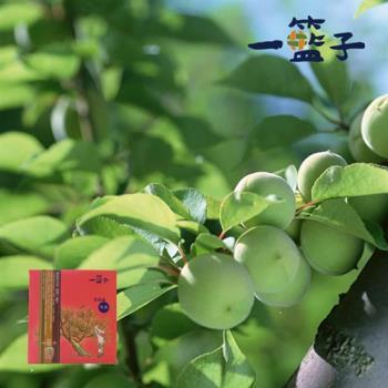 《一籃子》紫蘇梅(獨享包)75g/包,共10包