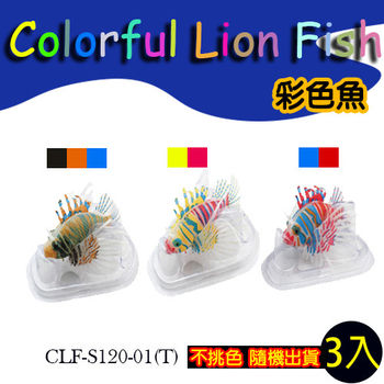 【水族精品】Colorful Lion Fish 彩色魚(3入)-隨機出色