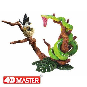 【4D MASTER】動物模型系列-翡翠樹寶兒DIORAMA造景蟒蛇獵鳥 25054