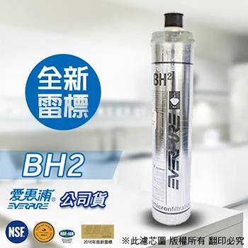 EVERPURE 愛惠浦原廠公司貨 BH2 濾心
