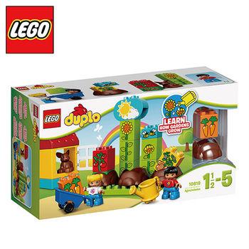 樂高【LEGO】L10819 我的小花園