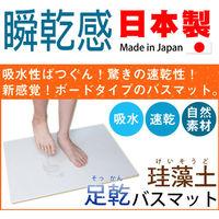 Fujiwara 珪藻土 素面款 足乾浴室腳踏地墊(小)