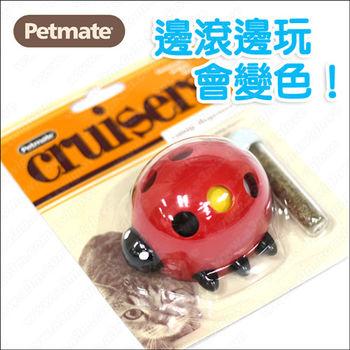 美國Petmate 填充式貓草玩具《瓢蟲》滾動會變臉