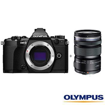 Olympus 奧林巴斯 E-M5 Mark II + 12-50mm EZ  單鏡組 單眼相機 (公司貨)