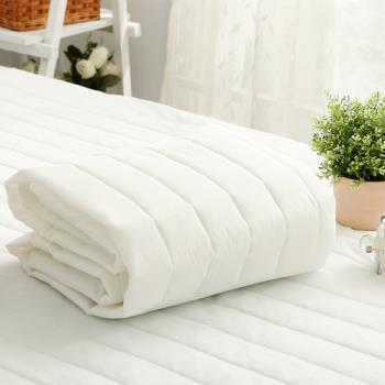 FOCA-《台灣製》平單式 防潑水雙人保潔墊超值2入組