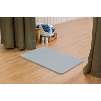 日本超夯超大尺寸吸水珪藻土地墊(七款可選)2入