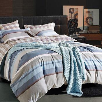 【Betrise】經典劇情-環保印染德國防螨抗菌精梳棉四件式兩用被床包組-特大