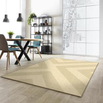 【范登伯格】海頓 現代皇家仿羊毛地毯-印象-160x230cm