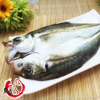 魚博士-魚霸 南方澳竹筴魚一夜干6尾入(240g/尾)