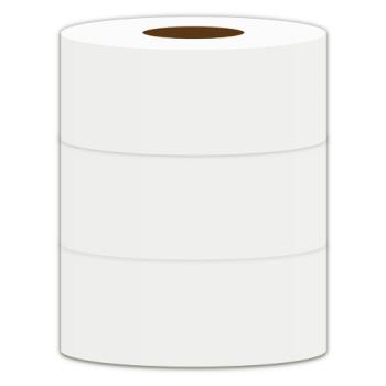蒲公英 環保大捲筒衛生紙1kgx3捲x4袋