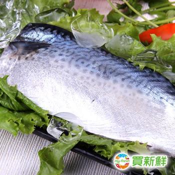 買一送一【買新鮮】省產鯖魚一夜干15片組(130g±10%/片)