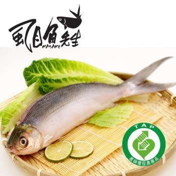 [虱目魚先生] 產銷履歷-整尾去刺虱目魚4尾(400g-500g/尾)