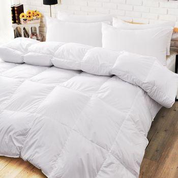 《dreamer STYLE》天然雙人羽絨枕被組(一被兩枕超值組)