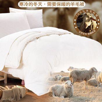 【頂級羊毛】雙人頂級羊毛纖維暖冬被/羊毛被 /超熱感被(2入)