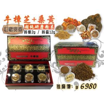 【百年永續健康芝王】牛樟芝桑黃 超純研磨粉末 (12g / 盒)
