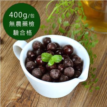 【幸美生技】進口急凍花青莓果400g/包(10包/組 可任選栽種藍莓/蔓越莓/黑醋栗)
