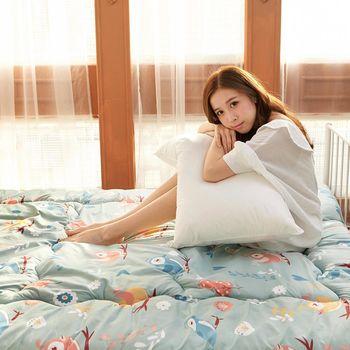 極細纖維磨毛單人床墊組 (床墊/地墊/和室/客廳) 俏皮小鳥