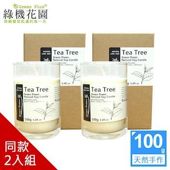 【綠機花園】幸福香氛 暖暖呵護-全手工天然大豆精油蠟燭100g 2入(同款式)