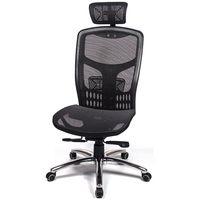 愛倫國度 戰神頂規高CP值高背頭枕金屬底電腦椅
