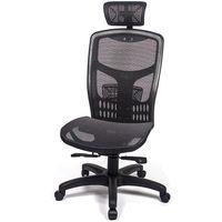 愛倫國度 戰神頂規高CP值高背頭枕電腦椅