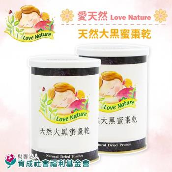 [育成基金會]天然大黑蜜棗乾(300g/包,共兩包)