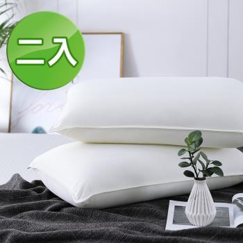 《HOYACASA漫步雲端》獨立筒枕頭(3M布彈力舒柔枕) 二入