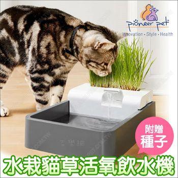 美國Pioneer Pet《水栽貓草活泉飲水機60oz》附小麥種子.兔子可用
