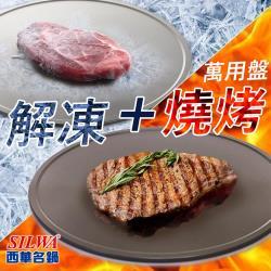 SILWA西華  節能冰霸極速解凍燒烤盤