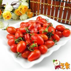 果之家 高雄美濃嚴選玉女小番茄6盒入(每盒1台斤)