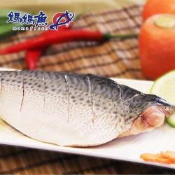 [媽媽魚N]挪威鯖魚魚排(150g x3片)
