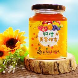 【田蜜園】養蜂場台灣野生黃金蜂蜜-搶購組