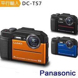 【腳讀清保】Panasonic DC-TS7 4K防水相機 *(中文平輸)