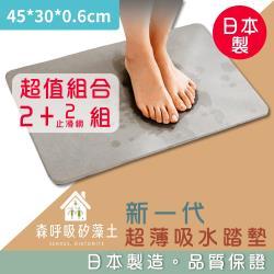 森呼吸矽藻土-超值2+2組-新一代超薄吸水踏墊日本製-礦灰精緻版_45x30x0.6cm
