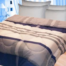 【雪妮絲】絲柔棉保暖冬被-貝塔-6x7尺  送純綿面紙布套1入