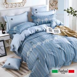 Raphael 拉斐爾 非凡 純棉雙人四件式床包兩用被套組