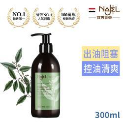 法國Najel阿勒坡古皂液木質沈香/淨透平衡頭皮SPA洗髮精300ml