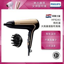PHILIPS飛利浦 負離子溫控護髮吹風機 HP8243