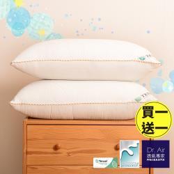 《Dr.Air 透氣專家》台灣製四季用獨立筒枕 高支撐 彈簧枕 防蹣抗菌 四季通用 天絲x3D雙材質 超釋壓 銀離子(買一送一)