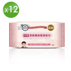【芊柔】清除腸病毒濕紙巾-12包組(家庭號80抽X12包)