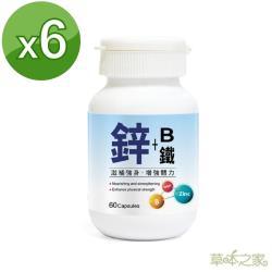 草本之家-鋅+B+鐵膠囊60粒X6瓶