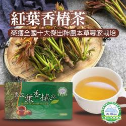 大雪山農場  紅葉香椿茶-3g-30包-盒  (2盒一組)