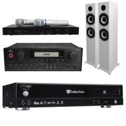 金嗓 Golden Voice CPX-900 R2電腦伴唱機 4TB+PMA-328擴大機+EWM-P28無線麥克風+S-6601白色主喇叭