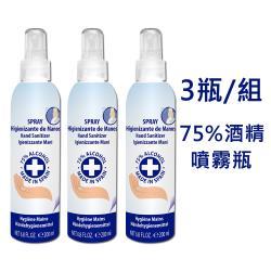 AIR-VAL 75%酒精乾洗手香氛噴霧-3件組 200ml
