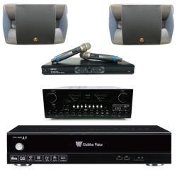 金嗓 Golden Voice CPX-900 A5卡拉OK點歌機4TB+AK-898擴大機+MR-865 PRO無線麥克風+P-500卡拉OK喇叭