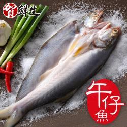 【賀鮮生】薄鹽午仔魚一夜干10尾(185g/尾)