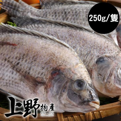 【上野物產】嚴選台灣產