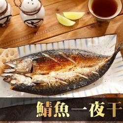 【海之金】挪威整尾鯖魚1尾(240g-280g/尾)